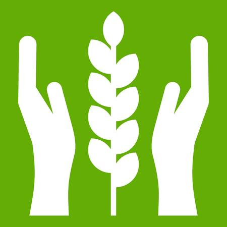 Hands and ear of wheat icon green