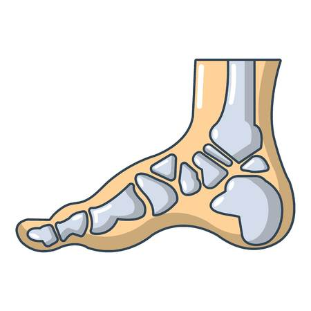X Ray of foot icon Illustration