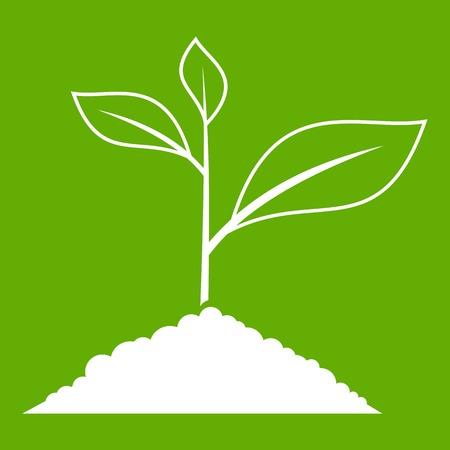 Growing plant icon Illustration