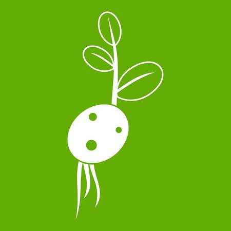 Potato sprout from the root icon green.