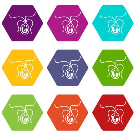 Bacterial cell icon set color hexahedron