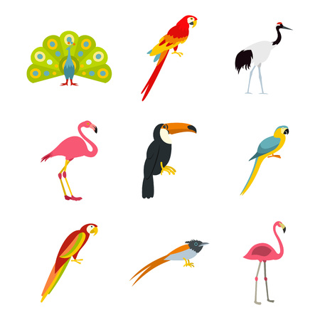 Exotic birds icon set