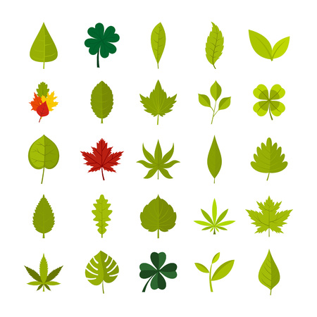 Leaves icon set. Flat set of leaf vector icons for web design isolated on white background