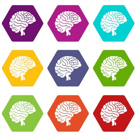 Brain icon set many color hexahedron isolated on white vector illustration