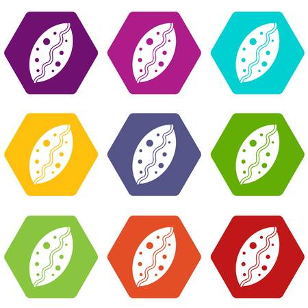 Baked pastry icon set color hexahedron Illustration