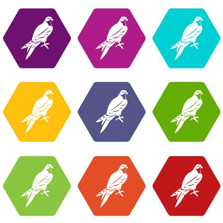 Falcon icon set many color hexahedron isolated on white vector illustration
