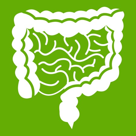 Intestines icon white isolated on green background. Vector illustration