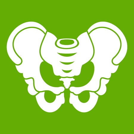 Pelvis icon white isolated on green background. Vector illustration