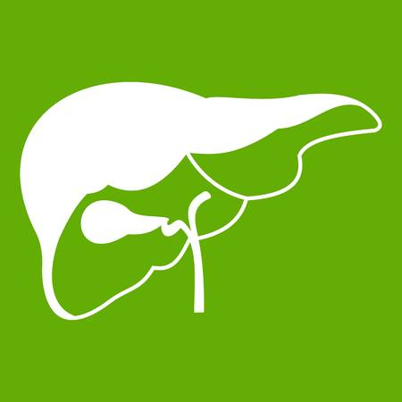 Liver icon on green background illustration. Illustration