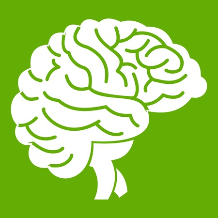 Brain icon on green background illustration.