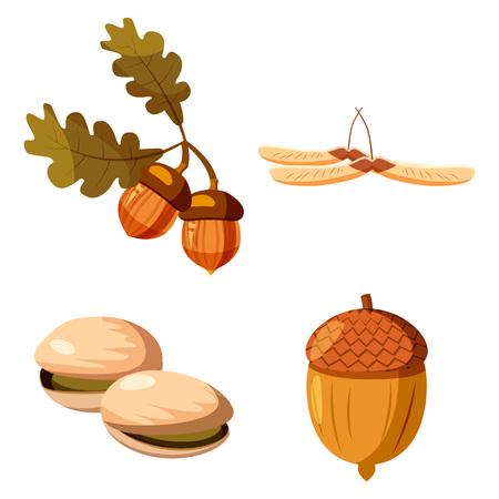 Nuts icon set, cartoon style