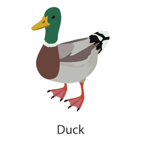 Duck icon. Isometric illustration of duck vector icon for web Illustration