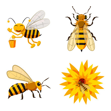 Bee icon set. Cartoon set of bee vector icons for web design isolated on white background Illustration