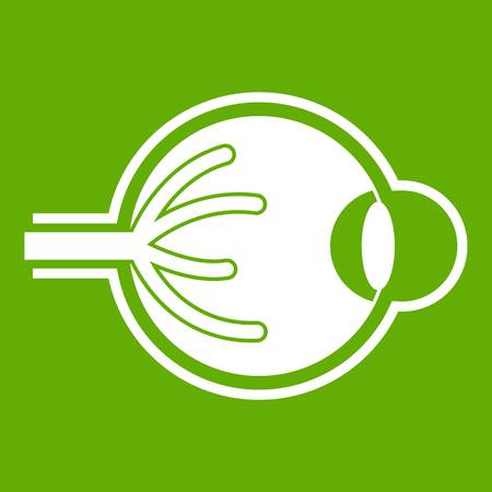 Human eyeball icon illustration on green background.