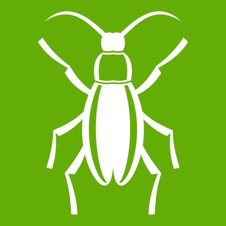 Beetle bug icon on green background