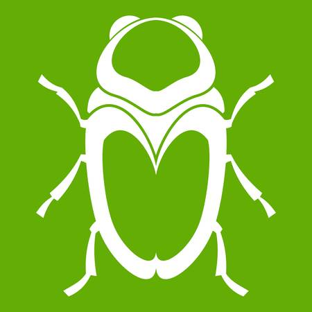 Scarab beetle icon on green background