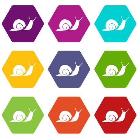 Snail icon set color hexahedron Illustration