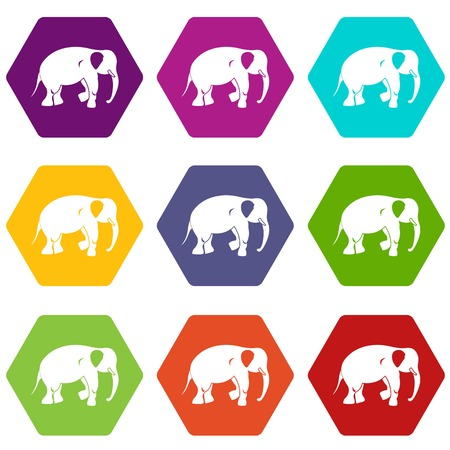 Colorful elephant icon set in hexahedron shape. Ilustração