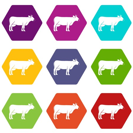 Colorful cow icon set in hexahedron shape. Illustration