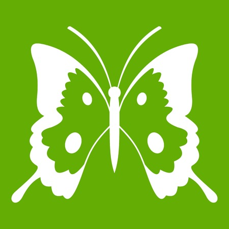 A Butterfly icon isolated on green background.