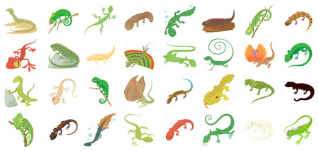 Lizard icon set, cartoon style