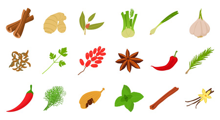 Spices icon set, cartoon style