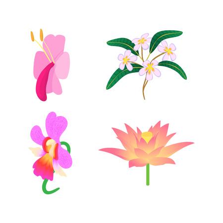 Exotic flower icon set, cartoon style