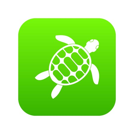 Turtle icon on digital green background Vectores