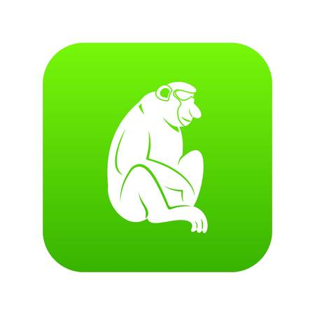Orangutan icon vector illustration