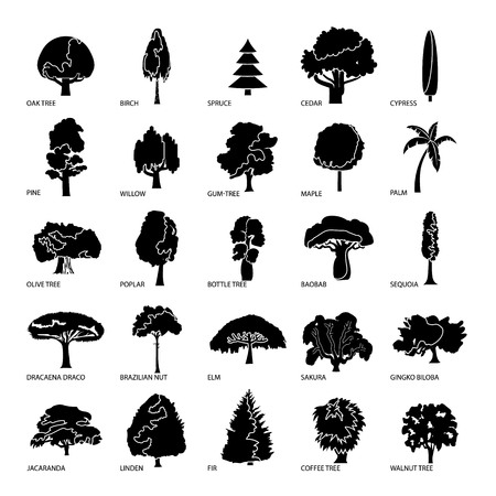 Tree types icons set, simple style.