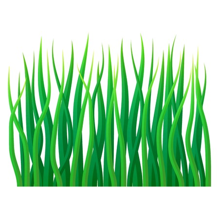 Eco grass icon. Realistic illustration of eco grass vector icon for web design isolated on white background