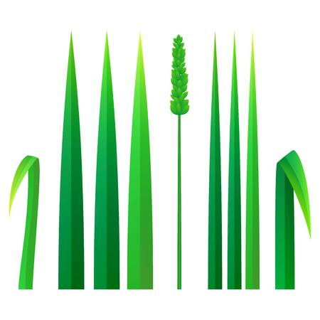 Strong grass icon. Realistic illustration of strong grass vector icon for web design isolated on white background