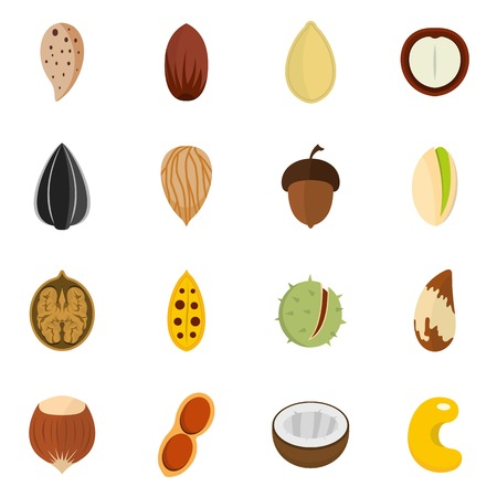 Nuts icons set vector flat design