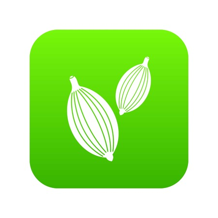 Cardamom pods icon digital green for any design isolated on white vector illustration