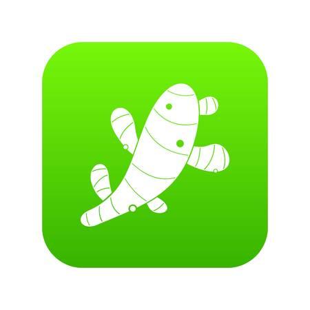 Ginger icon digital green for any design isolated on white vector illustration Illustration