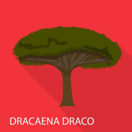 Dracaena draco icon. Flat illustration of dracaena draco vector icon for web Illustration