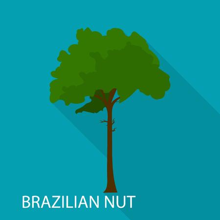Brazilian nut icon. Flat illustration of Brazilian nut vector icon for web Illustration