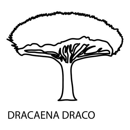 Dracaena draco icon, outline style