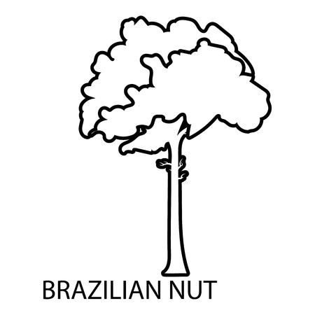 Brazilian nut icon, outline style Illustration