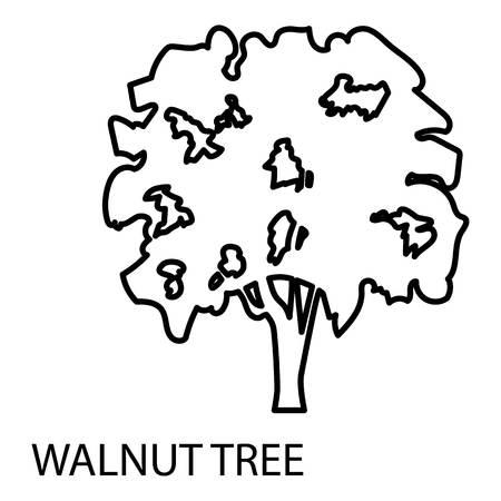 Walnut tree icon, outline style Vector illustration. 向量圖像