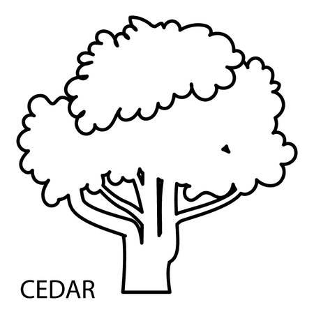 Cedar icon, outline style
