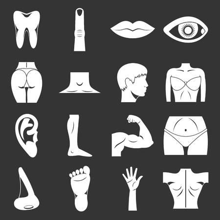 Body parts icons set grey vector Illusztráció