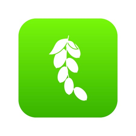 Branch of cornel or dogwood berries icon digital green Illustration