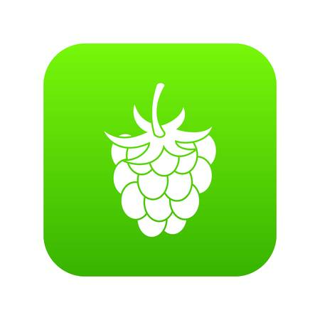 Raspberry icon digital green for any design, isolated on white vector illustration.