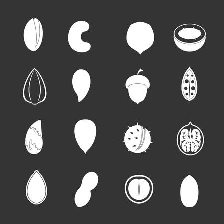 Nuts icons set grey vector