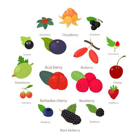 Berries icons set, cartoon style vector illustration. Illustration