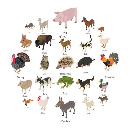 Set di icone di raccolta animali. Illustrazione isometrica delle icone di vettore della raccolta degli animali per il web