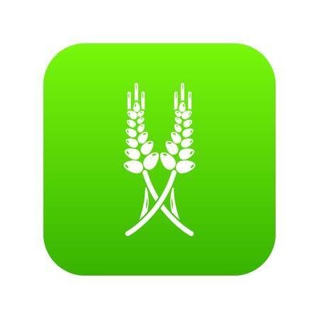 Long-term wheat icon green vector isolated on white background