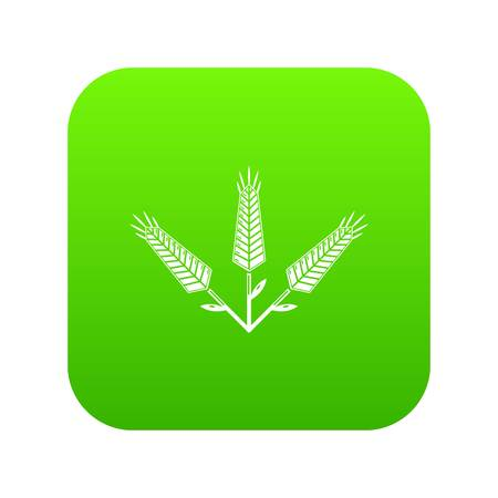 Abundant wheat icon green vector isolated on white background 일러스트