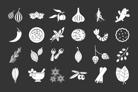 Spices icon set vector white isolated on grey background Vectores